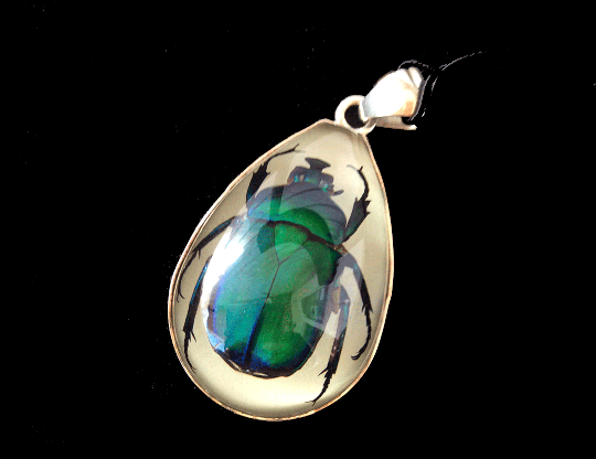 Resin Beetle Pendant